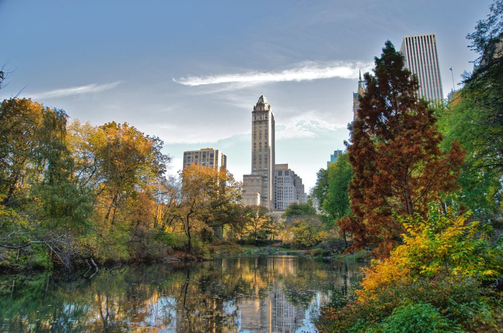 Guided tour in Central Park June 6th